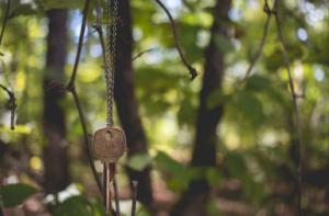 pic-key